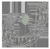 NNN logo - خانه