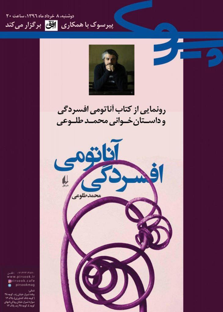 tour de shiraz 731x1024 - آناتومی افسردگی در تور دور ایران: شیراز